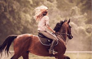 tessuti equitazione
